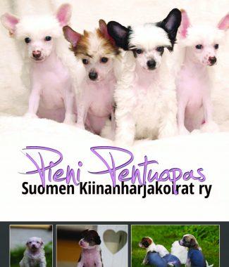 Pieni_Pentuopas